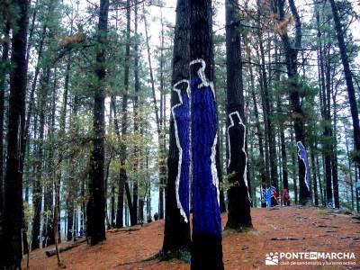 Reserva de la Biosfera Urdaibai - San Juan de Gaztelugatxe;senderos interpretativos calzado para sen